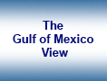 The Gulf of Mexico View